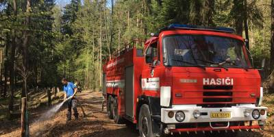 KSM Castings CZ a.s. helps to plant an avenue in Frýdlant